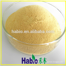 CAS:9001-62-1 powder enzyme lipase for bread improver